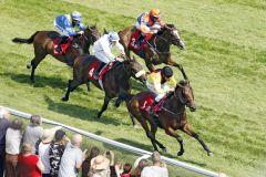 Molly Massimo kommt unter Adrie de Vries zu seinem ersten Sieg. www.galoppfoto.de - Sabine Brose