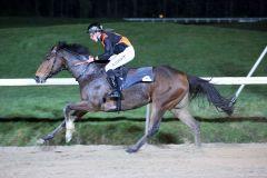 Moscatello gewinnt mit Marc Lerner in Neuss (Foto: Dr. Jens Fuchs)