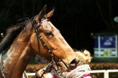 Moscatello nach seinem Sieg am 2.3.2016 in Neuss (Foto: Dr. Jens Fuchs)