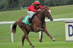 Ein Pferd mit Zukunft: Navarra King unter Andrasch Starke. www.galoppfoto.de - WiebkeArt