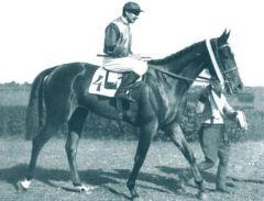 Nereide (GER) 1933