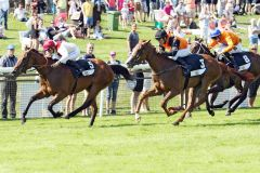 Jockey Wladimir Panov schafft auf Noelani seinen 500. Sieg. www.galoppfoto.de - Sabine Brose