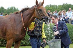 Kleine Wasserschlacht nach dem erfolgreichen Rennen ... Iberica mit Trainer Paul Harley. www.galoppfoto.de - Frank Sorge