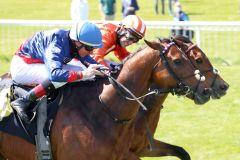 Only the Brave (vorne) hält Bristano knapp in Schach. www.galoppfoto.de