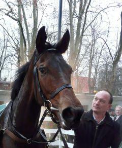Our Passion als Siegerin am 26.12.2011 in Neuss. (Foto Suhr)