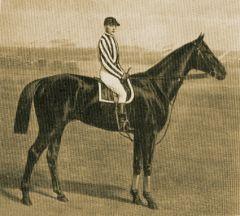1891 Derbysieger Peter