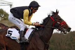 Pferd mit Fantasie in Richtung Derby: Der Monsun-Sohn Shimrano mit Adrie de Vries. www.galoppfoto.de - Sabine Brose