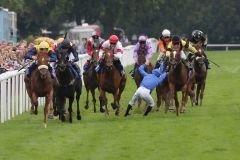 Pferd und Reiter unverletzt: Jockey Antoine Werle nach seinem Sturz von Emirates Rewards. www.galoppfoto.de - Frank Sorge