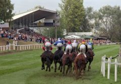 Pferde und Jockeys im Schlussbogen. www.galoppfoto.de - Frank Sorge