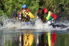 Pferde und Jockeys im See. Sieger Kazzio mit Cevin Chan links. www.galoppfoto.de - Frank Sorge