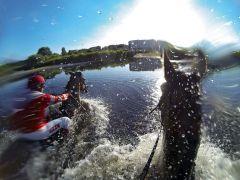 Pferde und Jockeys im See. www.galoppfoto.de - Mariuw Schwarz
