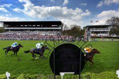Pferde und Jockeys vor der Tribüne: Elis Gury mit Filip Minarik gewinnt. www.galoppfoto.de - Frank Sorge