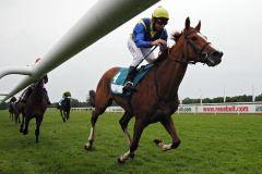 Präsentiert sich in Derby-Form - Swacadelic mit Adrie de Vries gewinnt. www.galoppfoto.de - Sabine Brose