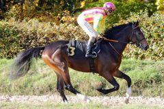 Prince Oliver mit Wladimir Panov beim Aufgalopp zum Ratibor-Rennen. www.galoppfoto.de - Stephanie Gruttmann