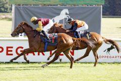 Prominenter Sieg mit internationaler Note durch Warring States unter Eduardo Pedroza in den Farben von Qatar Racing. www.galoppfoto.de - Sabine Brose