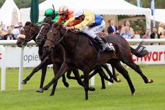 Rock Shandy mit Adrie de Vries (weisse Kappe) gewinnt. www.galoppfoto.de - Sabine Brose