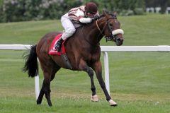 Rosenhill kommt völlig souverän zu seinem ersten Sieg. www.galoppfoto.de - WiebkeArt