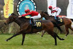 Royal Solitaire schafft gegen Nymeria ihren ersten Listensieg. www.galoppfoto.de - Francis Bandermann