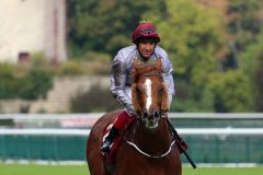 Ruler of the World gewinnt mit Frankie Dettori den Prix Foy, Gr. II, 2014-in Longchamp. Foto: Dr. Jens Fuchs