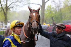 Das Pferd hat alles richtig gemacht, das Wetter weniger... Foto: Dr. Jens Fuchs
