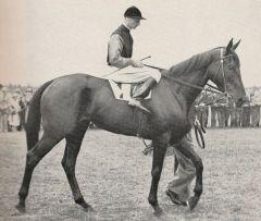 Schwarzgold (GER) 1937
