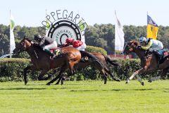 Einen Vorsprung von einer ½ Länge bringen Scorpio und Dennis Schiergen sicher ins Ziel. www.galoppfoto.de - Sabine Brose