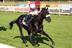 Shadow Chaser, auf Dauer ein besseres Pferd. www.galoppfoto.de - Sabine Brose