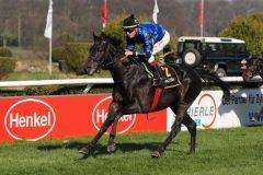 Ganz sicher ein besseres Pferd: Shanjo gewinnt unter Martin Seidl völlig souverän. Foto: Dr. Jens Fuchs