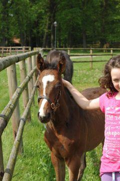 Shimrano mit Lizzy Baum Mai 2012.  Foto: Julia Baum