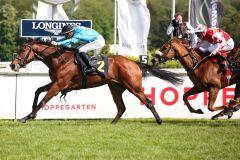 Shining Pass bleibt in Hoppegarten ungeschlagen. www.galoppfoto.de - Sabrine Brose