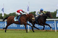 Shining Rules beim Maidensieg mit Andrasch Starke in Hannover. www.galoppfoto.de - Sabine Brose