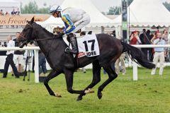 Shining Rules mit Koen Clijmans wird Letzter im IDEE 146. Deutsche Derby. www.galoppfoto.de - Sabine Brose