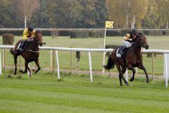 Shinzaro gewinnt unter Oliver Wilson im Stil eines sehr guten Pferdes. www.galoppfoto.de