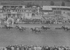 Sieger wird Tarim, Gestüt Bonas Experte landet beim Derby 1972 auf dem zweiten Platz, www.galopp-hamburg.de