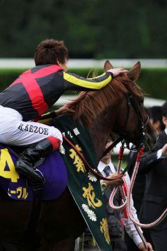 Siegreiter Ikezoe dankt seinem Partner Orfevre nach dem Sieg im Kikuka-Sho. www.shibashuji.com