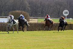 Sorgte gegen die großen Rennställe für die Überraschung: Kimberley's Dream mit Dennis Schiergen gewinnt beim Debüt. www.galoppfoto.de - Sabine Brose
