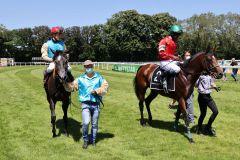 Mit Wilma (Martin Seidl) und The Conqueror (Eduardo Pedroza) werden nach diesem Rennen gleich zwei Pferde vom Geläuf geholt. ©Dr. Jens Fuchs