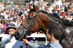 Thought Worthy mit William Buick nach dem Erfolg in den Great Voltigeur Stakes. www.galoppfoto.de - Frank Sorge