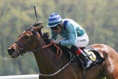 Thunderstruck mit Alexander Pietsch gewinnt in Hoppegarten. www.galoppfoto.de - Frank Sorge