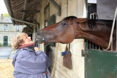Eine ganz besondere Beziehung: Trainerin Corine Barande-Barbe und ihr Superstar Cirrus des Aigles in Chantilly. www.galoppfoto.de - Frank Sorge