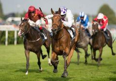 Turret Rocks gewinnt die May Hill Stakes. Foto ITM