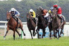 """Die beiden Pferd außen machen es spannend: Der Richterspruch lautet """"Ka. K"""" zugunsten von Tuscany (rechts) mit Jose Luis Silverio gegenüber Rosy Blush (Michael Caddedu). www.galoppfoto.de - Peter Heinzmann"""