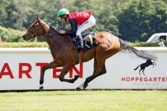 Beim fünften Versuch gelingt der Areion-Tochter Contessa unter Adrie de Vries der erste Sieg. www.galoppfoto.de - Sabine Brose