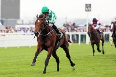 War Command mit Seamus Heffernan ist der Sieger in den  Coventry Stakes. www.galoppfoto.de - Frank Sorge