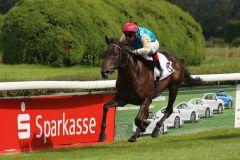 Als Erste im Ziel, aber wegen Behinderung des viertplatzierten Pferdes Sealord wurde Weichsel mit Andreas Helfenbein auf den vierten Platz zurückgestuft. Foto: Dr. Jens Fuchs