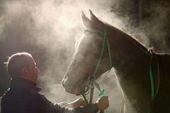 Welkando als Geisterpferd, Neuss, 2.12.2016 (Foto: Dr. Jens Fuchs)