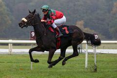 Das sah schon gut aus: Wintermond gewinnt unter Martin Seidl. www.galoppfoto.de - Sabine Brose