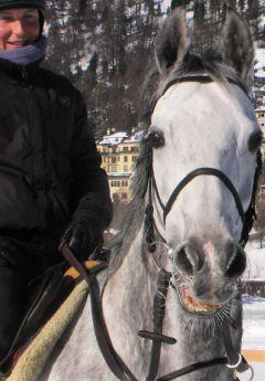 Simonas St. Moritz 2008  Foto: www.Rennstall-Woehler.de