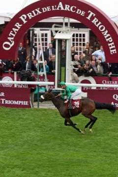 Zarkava mit Christophe Soumillongewinnt den  87. Qatar Prix de L'Arc de Triomphe. www.galoppfoto.de