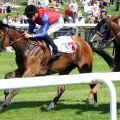 Wishjoy kommt trotz einer Pause leicht zum Zuge. www.galoppfoto.de - Sabine Brose